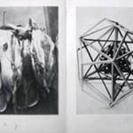 """JOSEPH BEUYS, """"Rheinische Bienenzeitung"""" - Biene in der Kunst, 1975 [edition]"""