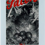 Salon, issue No. 1 [February], 2016