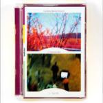 PIPILOTTI RIST, Lullaby, 2002